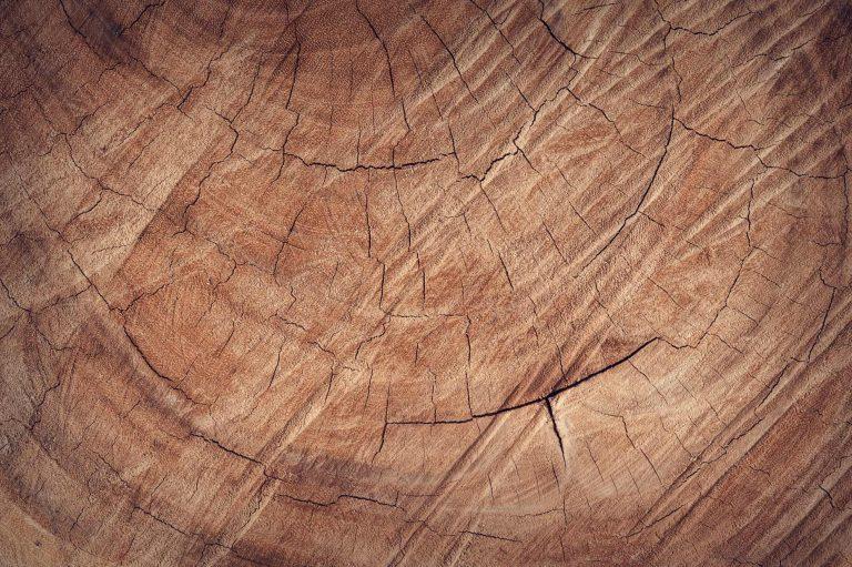 Solutii inteligente pentru folosirea lemnului